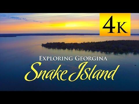 Exploring Georgina: Snake
