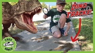 Dinosaur Tracks! Dinosaurs for Kids! Nerf Pretend Play Showdown When Baby T-Rex Steals LB's Candy