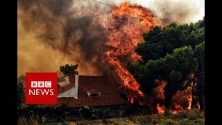 Deadly forest fires rage across Greece - BBC News