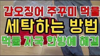 [갑프로] 갑오징어 주꾸미 먹물 지우는 세탁 방법 먹물 지우기 한방에 해결 하세요 - 강추