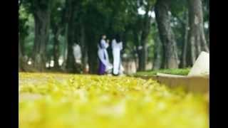 Hà nội mùa hoa sấu - Trương Quý Hải