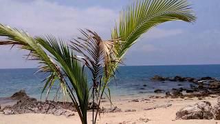 Рассказываю как живём на острове в Тайланде. Интересный влог о жизни у моря+скутер