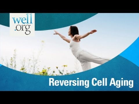 Can A Healthy Lifestyle Reverse Cell Aging? | Well.Org