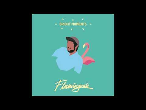 Flamingosis  Bright Moments Full Album HD