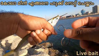 Live bait/how to mąke chain hook/how to catch needle fish