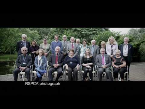 Panorama RSPCA 03/08/2017