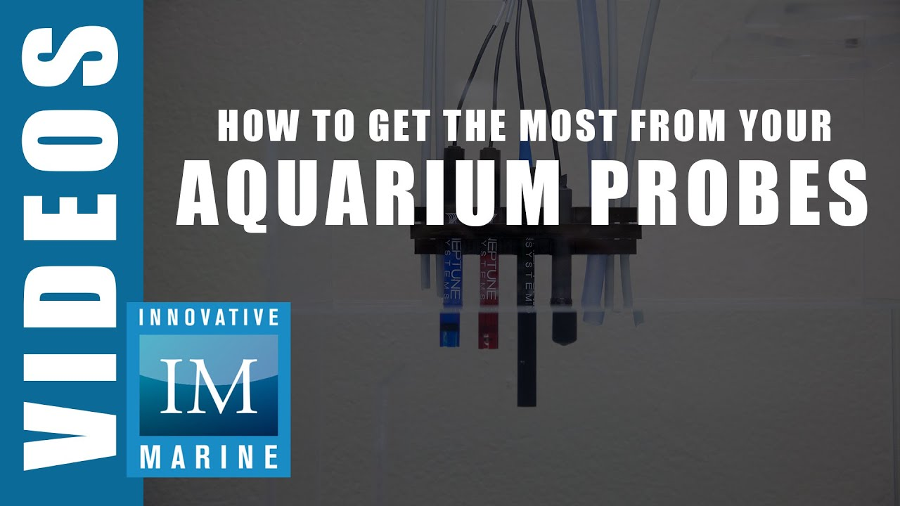 How to Get the Most From Your Aquarium Probes Innovative Marine