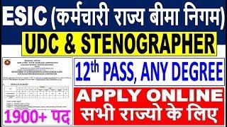 ESIC UDC & Stenographer Recruitment 2019    All India Job    ESIC UDC/Stenographer Online Form 2019
