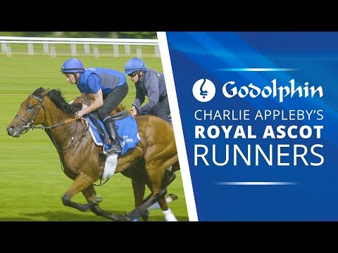Royal Ascot Preview | Charlie Appleby earmarks 4 for Godolphin