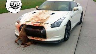 Top 10 NISSAN GTR Crash  - Stupid Skyline GTR Crashes