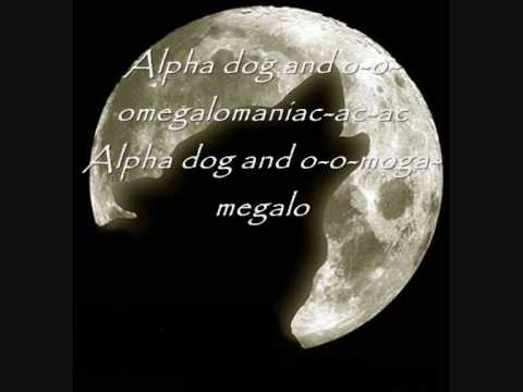 Fall out Boy  Alpha Dog  Lyrics