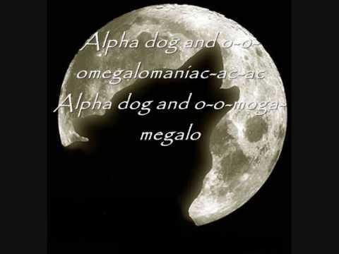 Fall out Boy - Alpha Dog  (Lyrics)