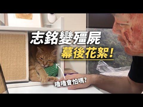 【志銘變殭屍嚕嚕會怕嗎?幕後花絮!】志銘與貍貓 - YouTube