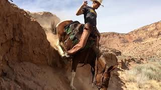 Extreme Mule Riding-Desert Style