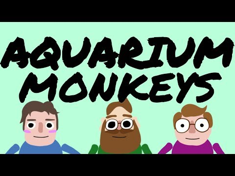 DBH: MBMBAM Animatic- Two Word Quotes - YouTube