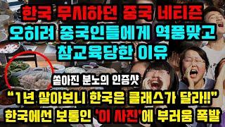 한국 무시하던 중국 네티즌 오히려 중국인들에게 역풍맞고…