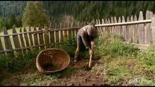 Leben am Abgrund in Südtirol   Teil 2von2 (geosfilm)