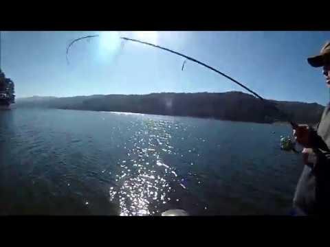 Fishing At San Pablo Reservoir - 11/9/2019