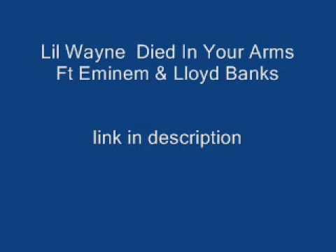 Lil Wayne Died In Your Arms Ft Eminem & Lloyd Banks Remix