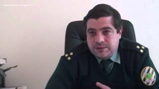 видео Купить замороженную брокколи оптом по цене производителя