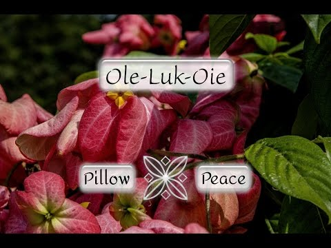 """""""Ole-Luk-Oie"""" - Hans Andersen's fairy tales 