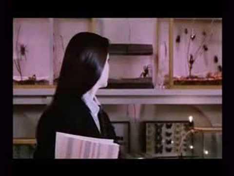 Phenomena (Trailer)