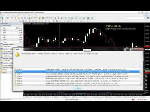 Forex trading stategies that really work