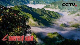 《城市1对1》 20190804 传奇之地 中国·巴中——新西兰·坎特伯雷| CCTV中文国际