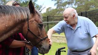 Horse Therapy At Aged Care Facility