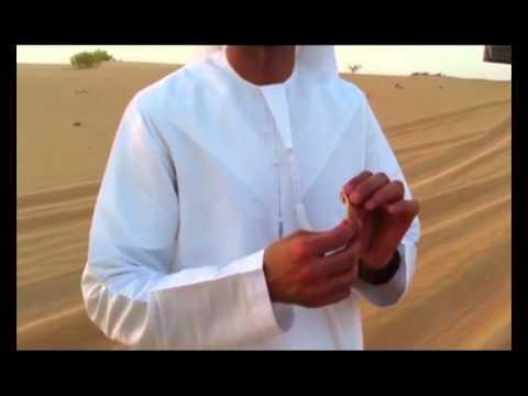 Henry McKean is in Abu Dhabi on a Desert Safari