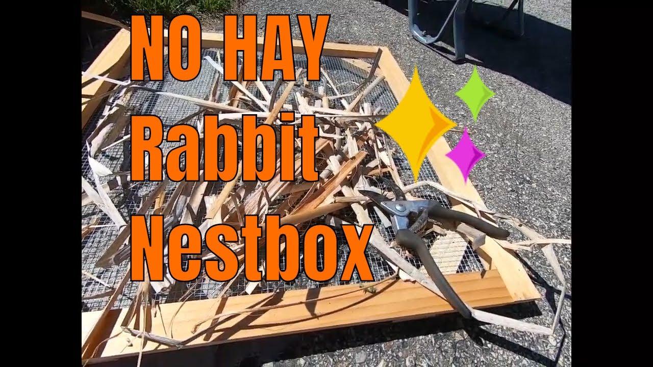No hay nestbox video.