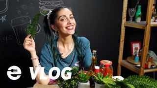Insta hacks για τη σωστή food pic #FoodHacks [S05E77]