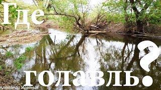 Где и как ловить голавля весной на бомбарду, майского жука рыбалка под Киевом на реке Ирпень 2018
