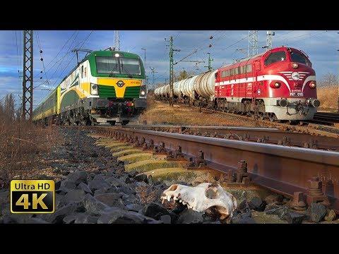 Fast trains in Hungary - 160km/h - Budapest - Gyor rail traffic (Nagyszentjanos) [4K]
