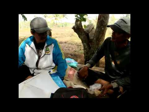 Tanah Umum Muara Ciawi Caringin Garut Jawa Barat 14  Memberi Keterangan Pa Kardan