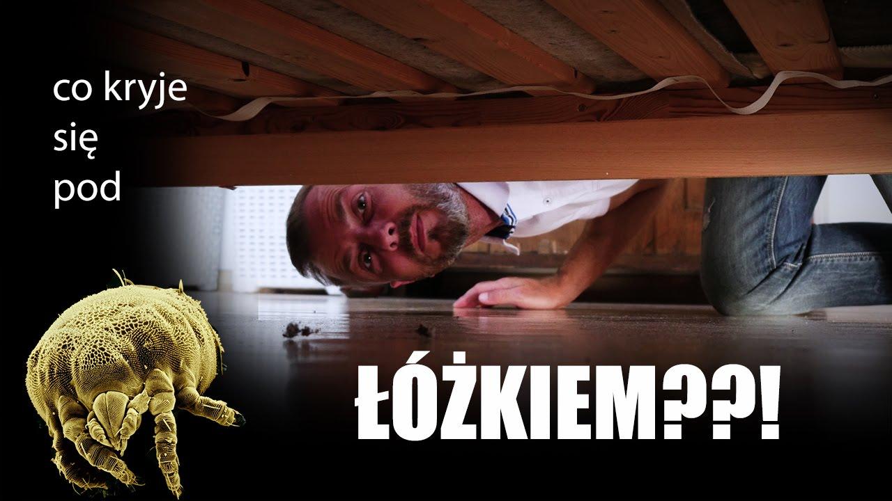 Co kryje siępod łóżkiem? - Nauka. To lubię.