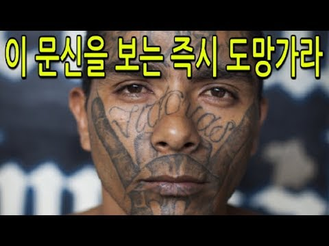 이 문신을 한 외국인을 보는 즉시 도망가라!! 1탄