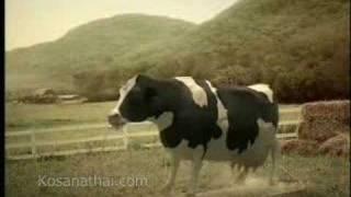 Nestle Milk Thai AD Part1