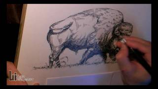 Drawing a Bison by Igor Lukyanov (cross-hatching)
