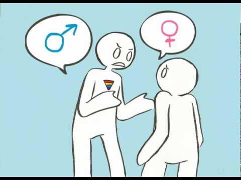 Gender Animatic