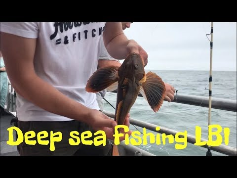 Deep Sea Fishing LBI New Jersey!