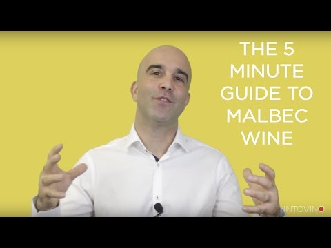 The 5 Minute Guide to Malbec Wine