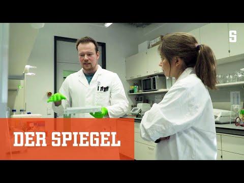 Im Hochsicherheitslabor: Virenjäger