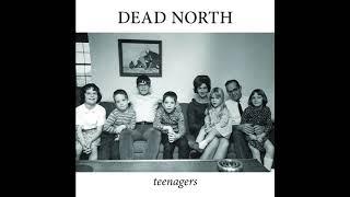 Dead North - Teenagers FULL ALBUM | Ohio Punk Rock