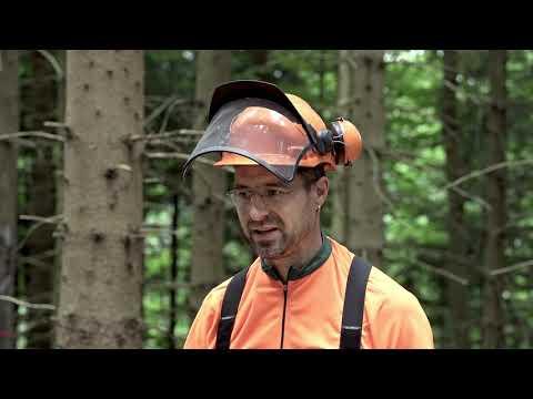 Einsatz Spillwinde in der Forstwirtschaft - Tutorial der Bayerischen Staatsforsten