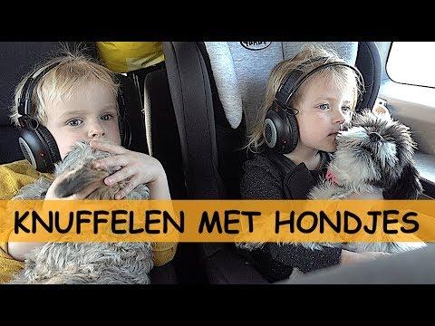 OP NAAR HUiS! 😪🙋🚗🏡   Bellinga Familie Vlog #931