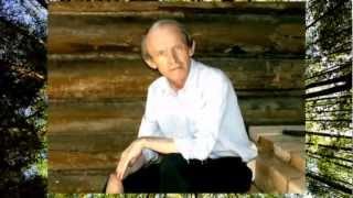 ОДИНОКИЙ МУЖИЧОК  - Дмитрий  ВАСИЛЕВСКИЙ