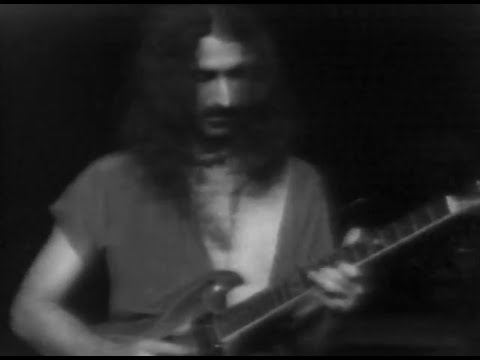 Frank Zappa Pound For A Brown On The Bus (incomplete)