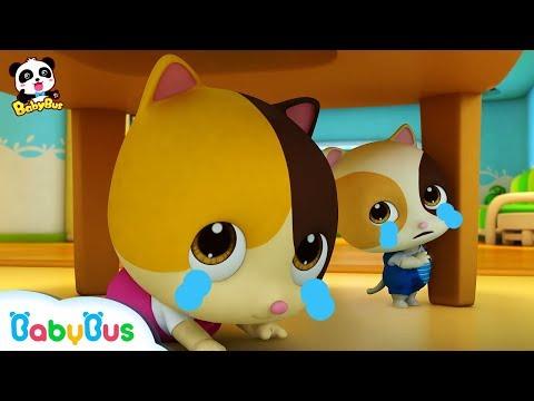 Keluarga Kucing & Keluarga Panda | Kumpulan Film Anak | Bahasa Indonesia | BabyBus