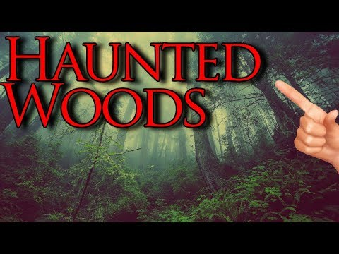 Haunted Forest Sounds & Voices | Live Paranormal Session